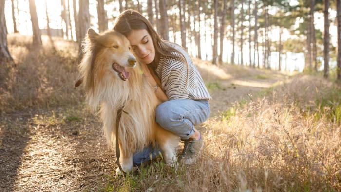 Die gute Beziehung zwischen Mensch und Hund als Voraussetzung für gelingende Erziehung