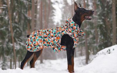 Hundebekleidung, Jäckchen und Mäntelchen für den Hund