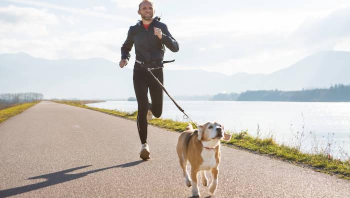 Joggen mit Hund - bequem mit Bauchgurt